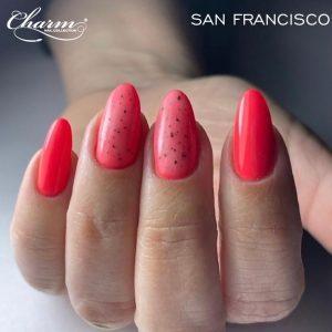 BANNER SAN FRANCISCO